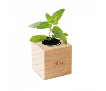 herb-pot-wood--MO9337-40$1--hd.jpg